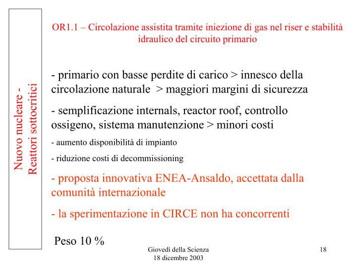 OR1.1 – Circolazione assistita tramite iniezione di gas nel riser e stabilità idraulico del circuito primario