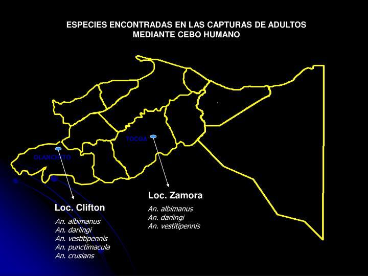 ESPECIES ENCONTRADAS EN LAS CAPTURAS DE ADULTOS