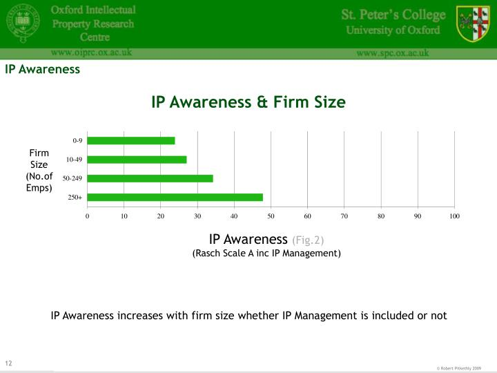 IP Awareness & Firm Size