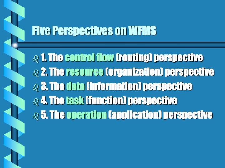Five Perspectives on WFMS