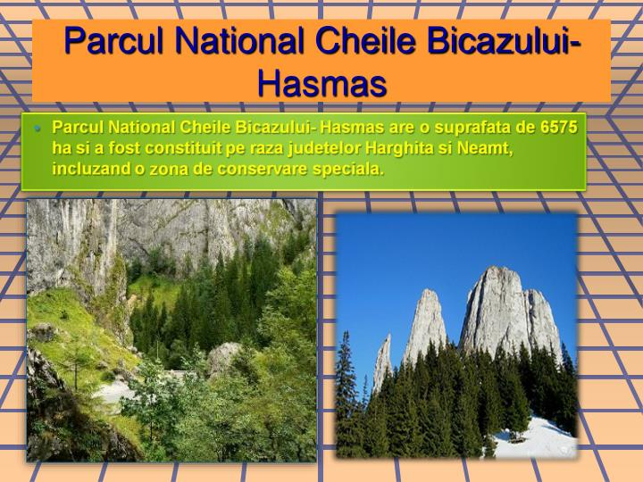 Parcul National Cheile Bicazului-Hasmas