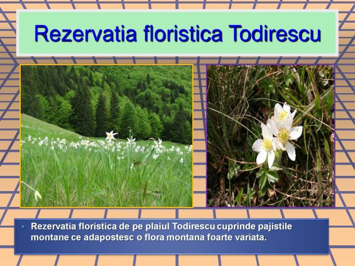 Rezervatia floristica Todirescu