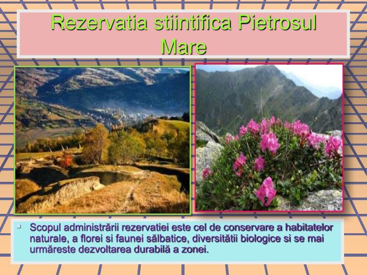 Rezervatia stiintifica Pietrosul  Mare
