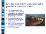 live bait availability a serious potential problem in the indian ocean
