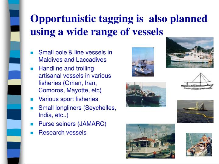 Opportunistic tagging is  also planned using a wide range of vessels