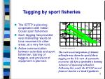 tagging by sport fisheries
