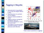 tagging in mayotte