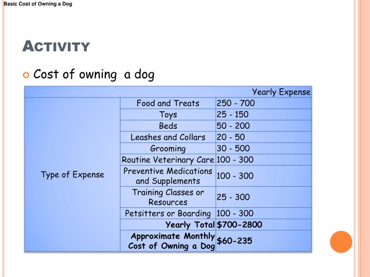 Basic Cost of Owning a Dog