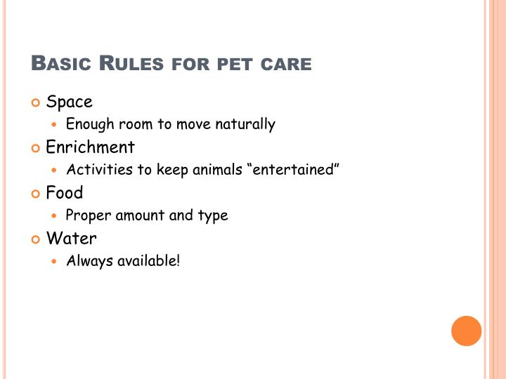 Basic Rules for pet care
