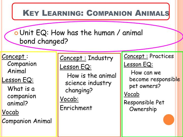 Key Learning: Companion Animals