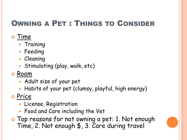 Owning a Pet : Things to Consider