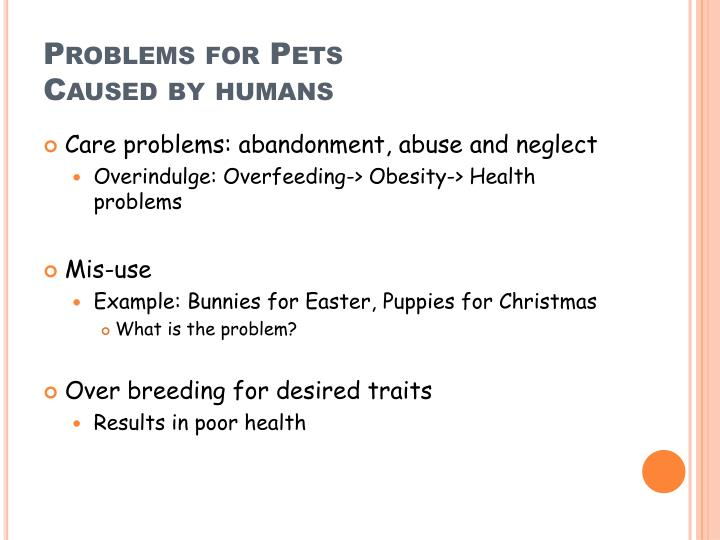 Problems for Pets