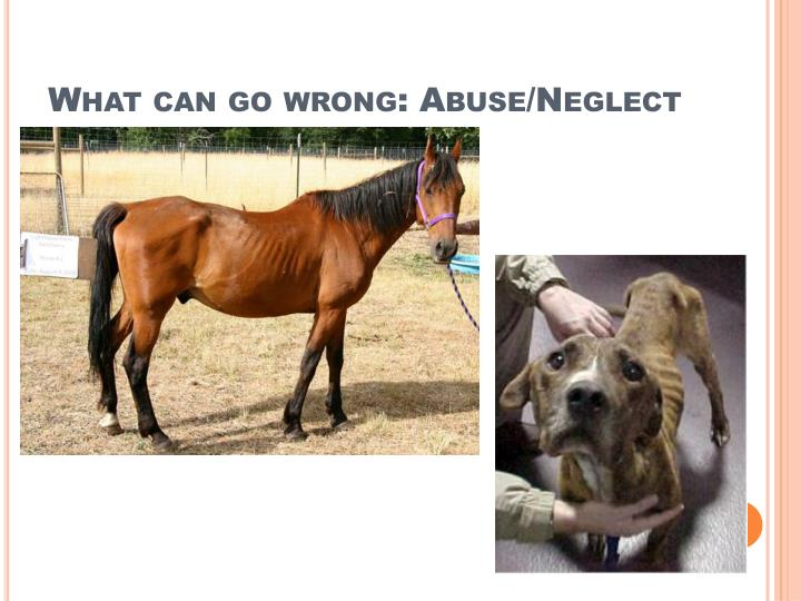 What can go wrong: Abuse/Neglect