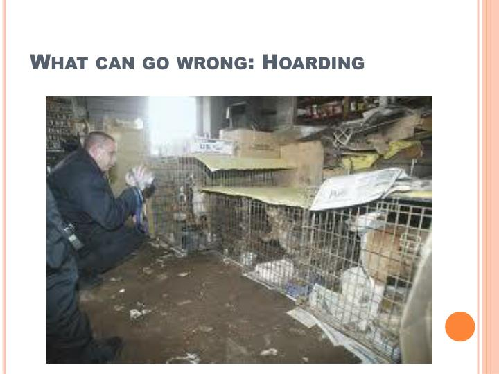 What can go wrong: Hoarding