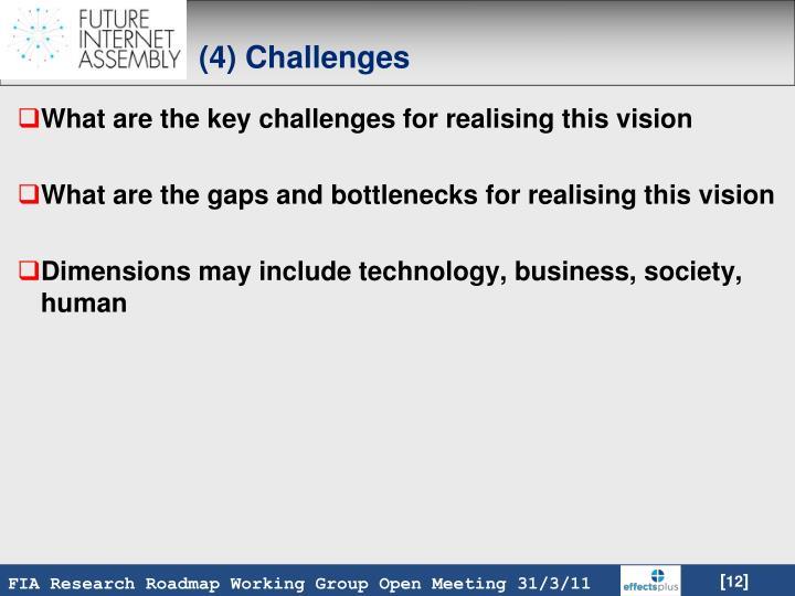 (4) Challenges