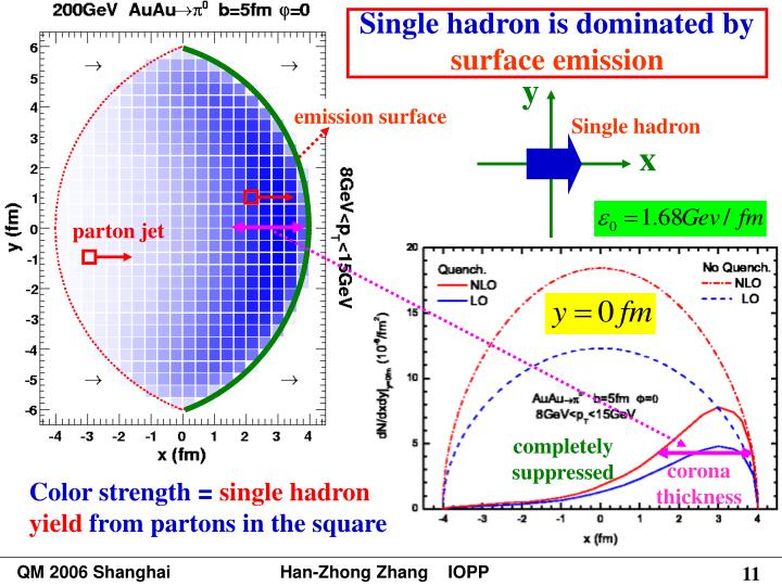 Single hadron is dominated by