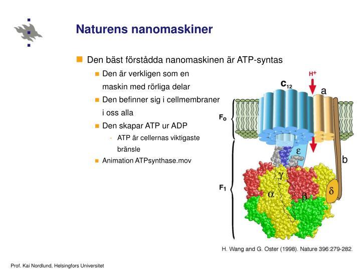 Naturens nanomaskiner