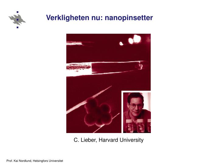 Verkligheten nu: nanopinsetter