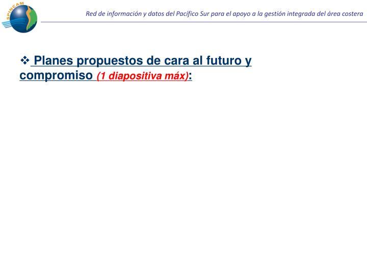 Planes propuestos de cara al futuro y compromiso
