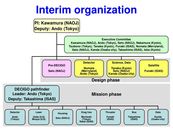 Interim organization