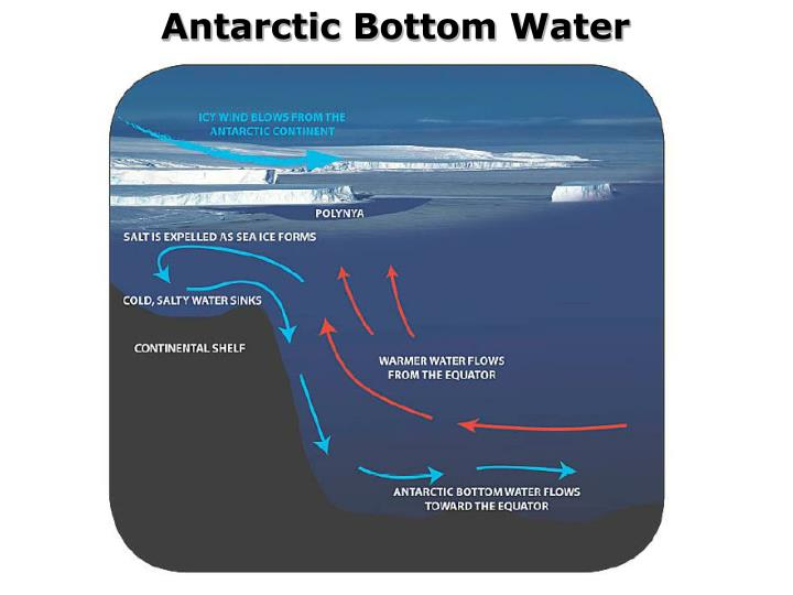 Antarctic Bottom Water