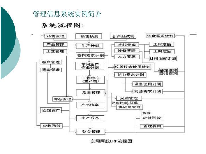 管理信息系统实例简介