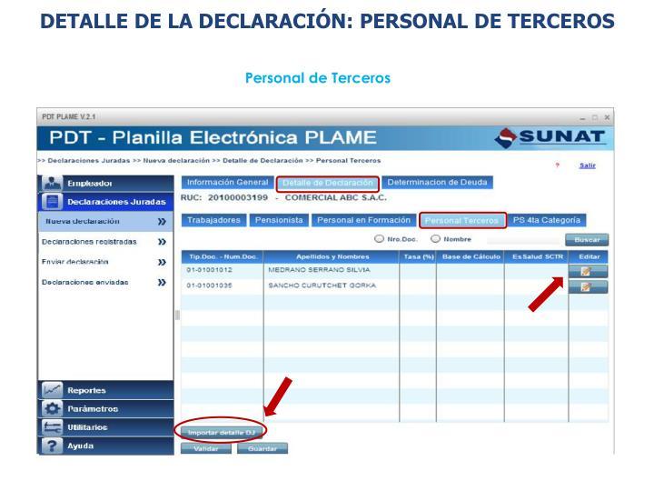 DETALLE DE LA DECLARACIÓN: PERSONAL DE TERCEROS