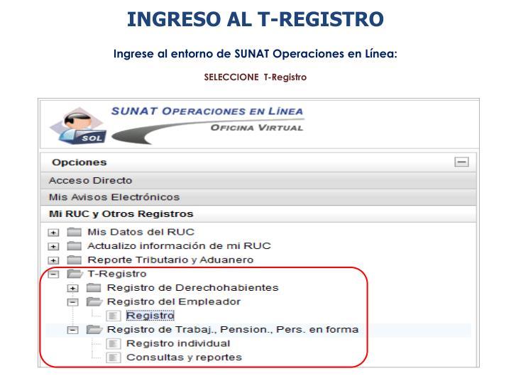 INGRESO AL T-REGISTRO