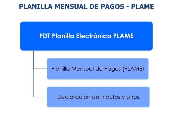 PLANILLA MENSUAL DE PAGOS - PLAME