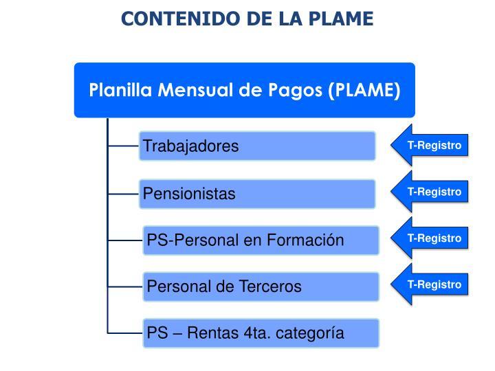 CONTENIDO DE LA PLAME