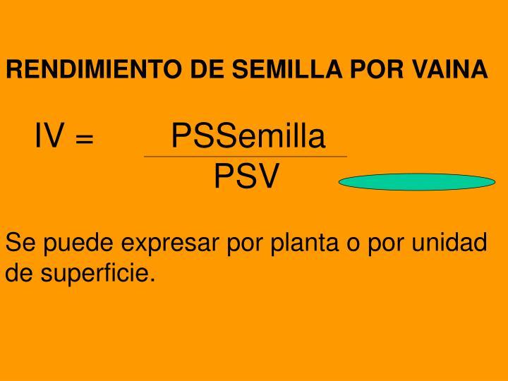 RENDIMIENTO DE SEMILLA POR VAINA