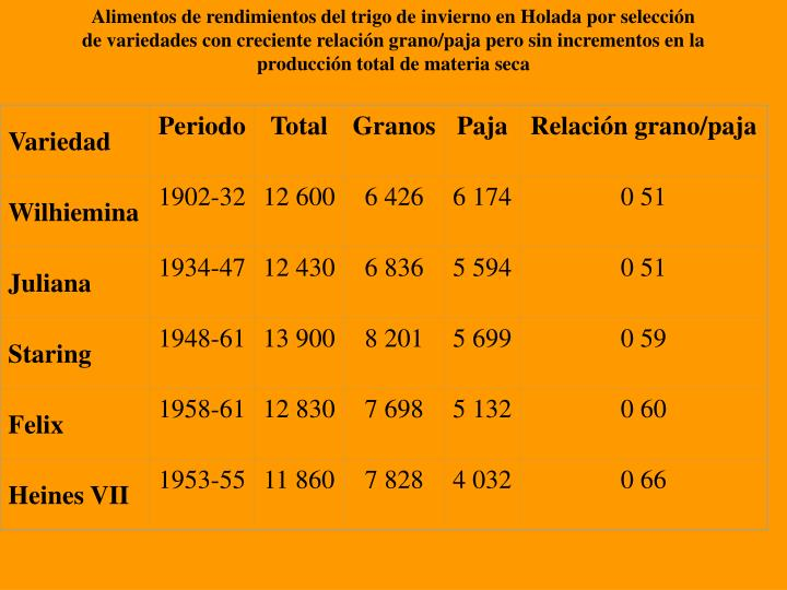 Alimentos de rendimientos del trigo de invierno en Holada por selección