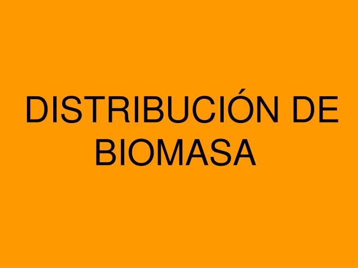 DISTRIBUCIÓN DE