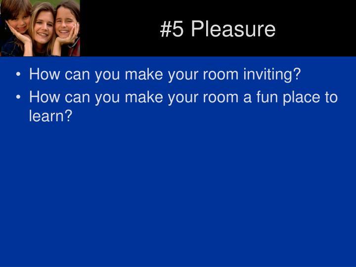 #5 Pleasure