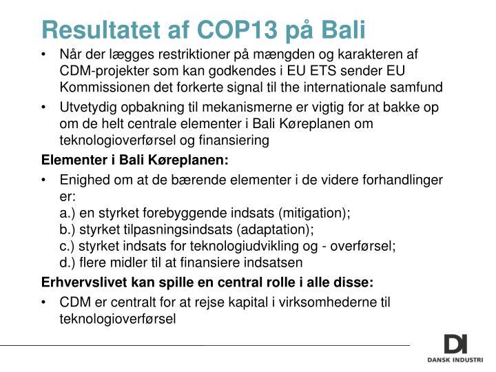 Resultatet af COP13 på Bali