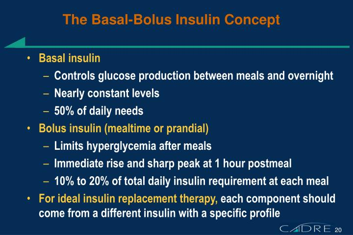 The Basal-Bolus Insulin Concept