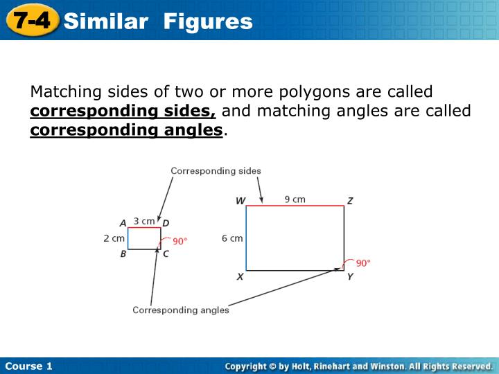 Matching sides of two or more polygons are called