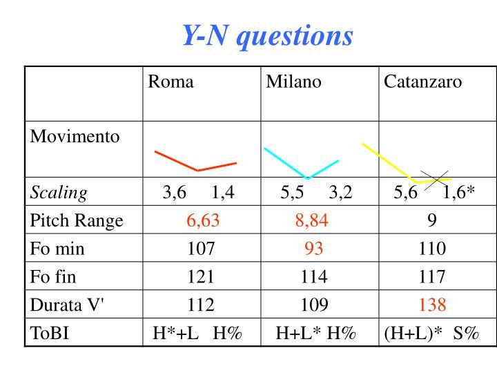 Y-N questions