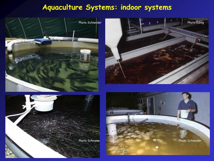 Aquaculture Systems: indoor systems