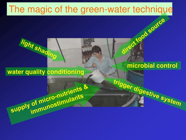 The magic of the green-water technique