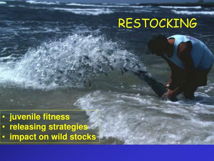 RESTOCKING