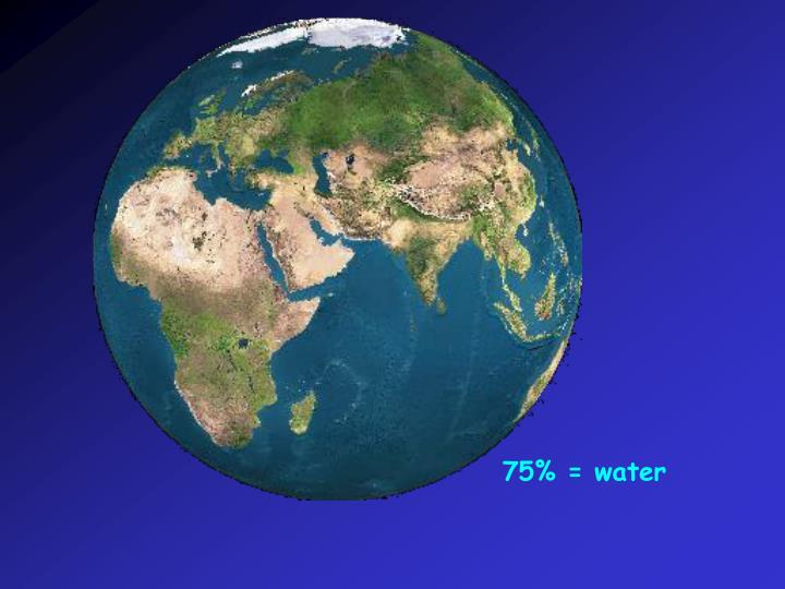 75% = water