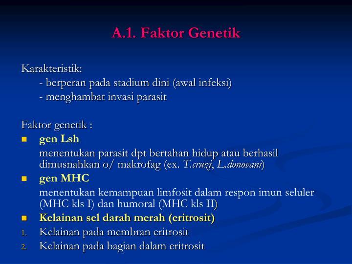 A.1. Faktor Genetik
