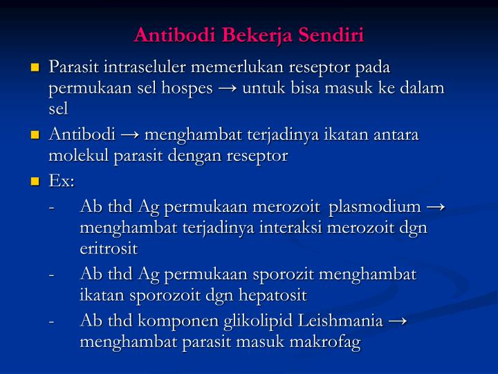 Antibodi Bekerja Sendiri