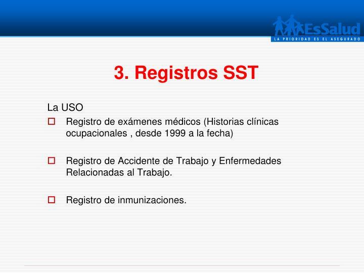 3. Registros SST