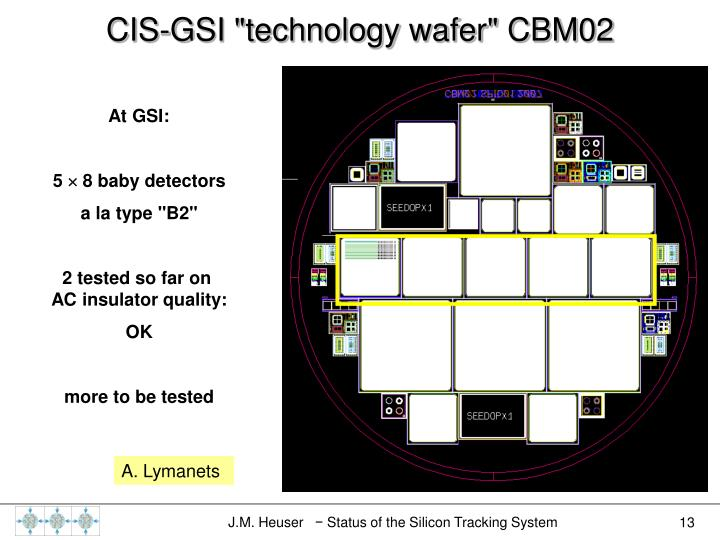 "CIS-GSI ""technology wafer"" CBM02"