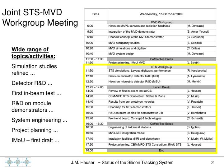 Joint STS-MVD Workgroup Meeting