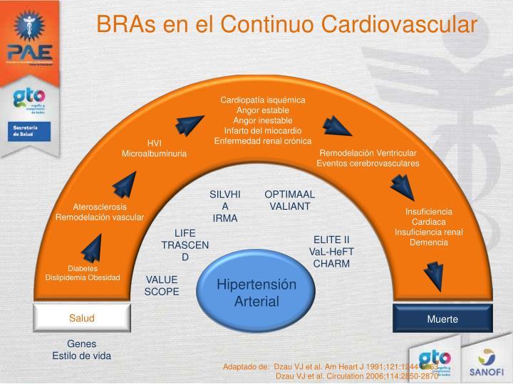 BRAs en el Continuo Cardiovascular