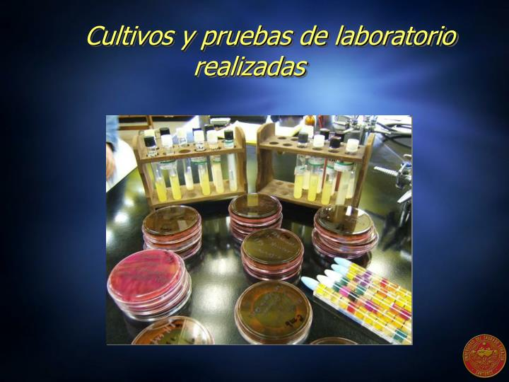 Cultivos y pruebas de laboratorio realizadas