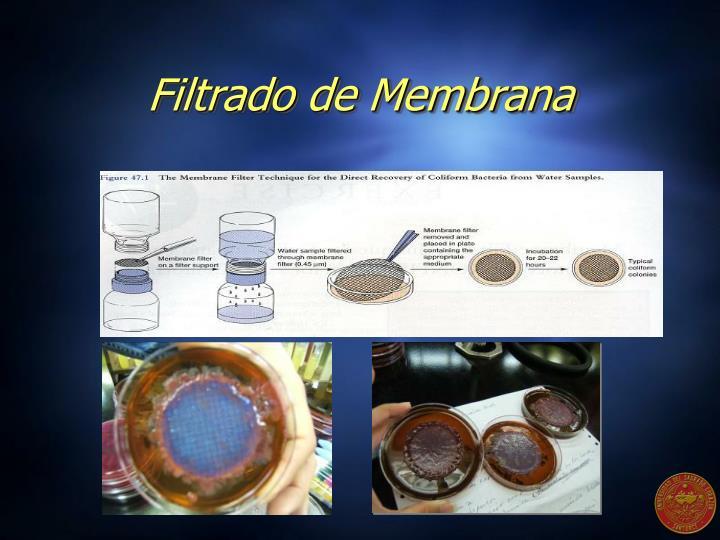Filtrado de Membrana
